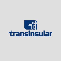 Transinsular